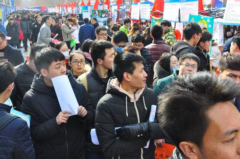 英才网联亮相河北省毕业生就业市场大型招聘会